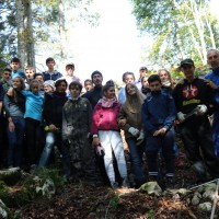 Forestazione IX Classe: Il Bosco come comunità di vita