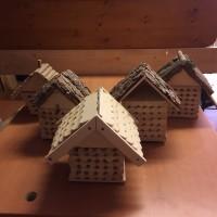 Le arnie per le api selvatiche, progetto di IX classe