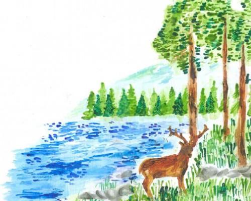 Presentazione dell´esperienza di Forestazione a Caneva